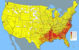 African American population in the USA