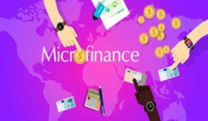Biggest microfinance companies in the U.S.